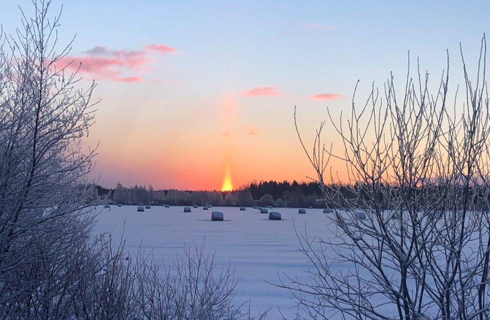 LUGEJATE FOTOD   Napp talvine päikesevalgus pakub ilusaid vaatepilte