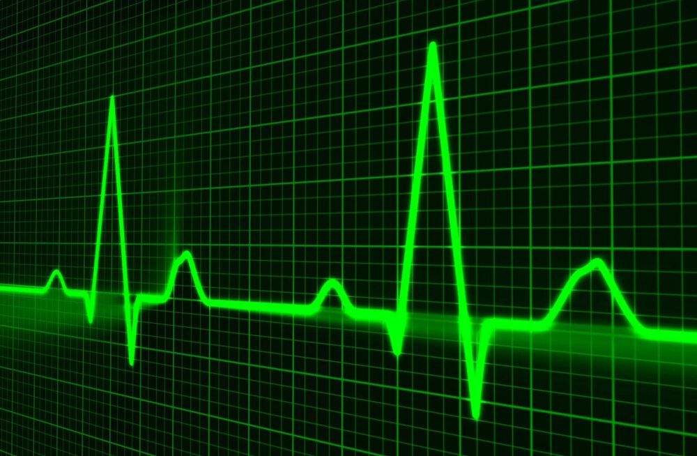 Möödunud nädala tegijateks olid Maalehe veebis südamearst, alkoholisõltuvuse ravi, testament ja filipiinlasest lüpsja