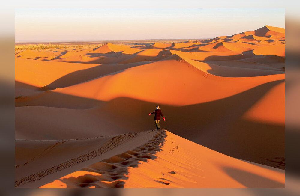 Maakodu reis Aafrika läänenurka ja külmapoolusele