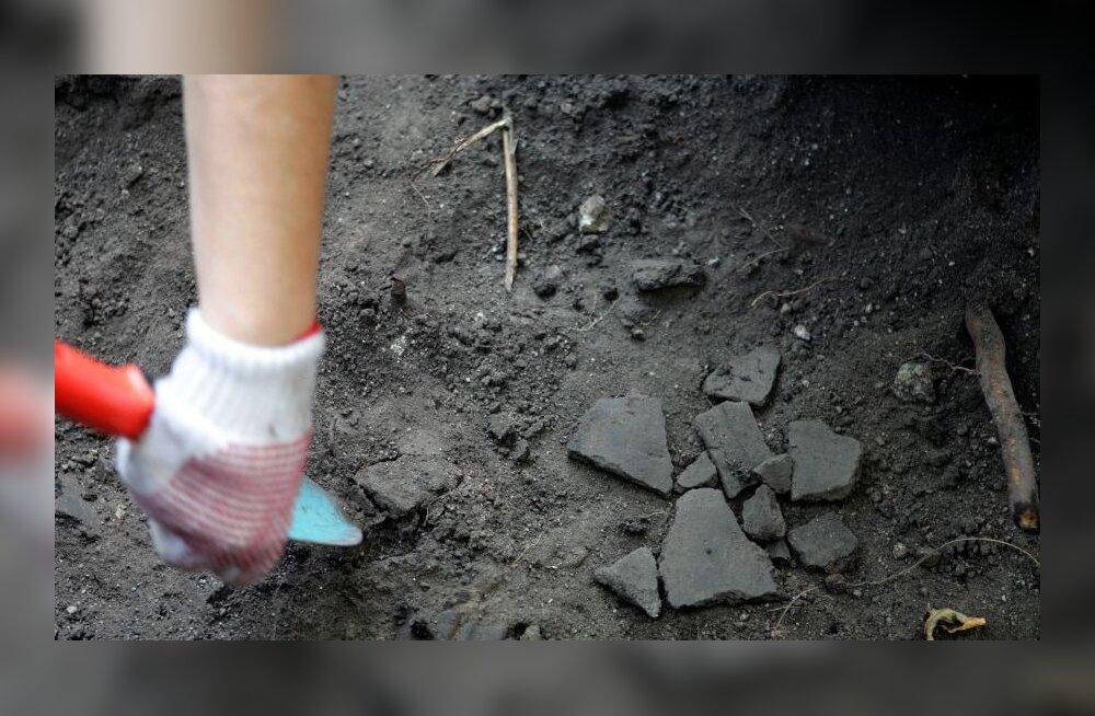 Saaremaal avastatud inimluud võivad olla tuhat aastat vanad
