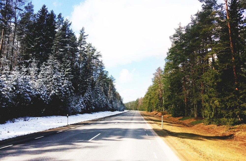 Kevad ja talv 14. aprillil Vikipalus.