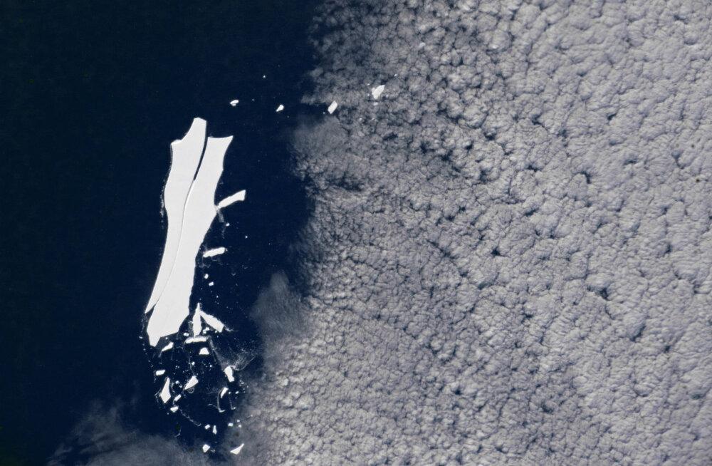 Kõigi aegade suurim mõõdetud jäämägi on lõplikult üles sulamas