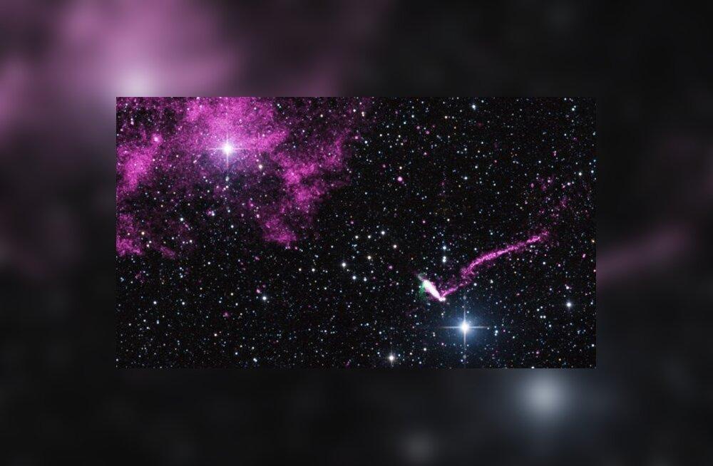 IGR J11014-6103. (Foto: NASA/CXC/ISDC)