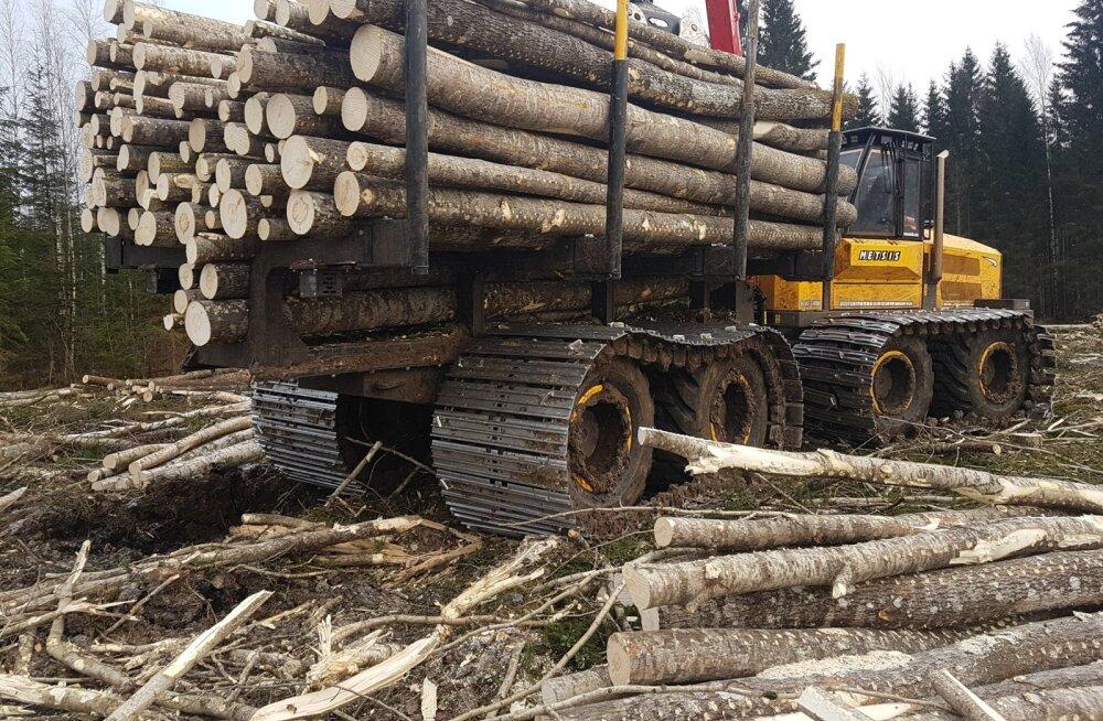 Osaühingu Prenton ekskavaatorikilpi dest ehitatud laiade lintide ja pikema vahega balanssiiriga väljaveotraktor veab puidu metsast välja ilma sügavamat jälge jätmata.