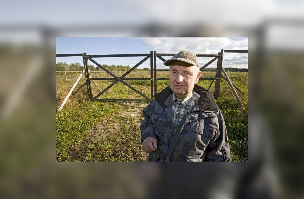 Roosidega kuulsaks saanud Johannes Valk hakkas kasvatama maarjakaski