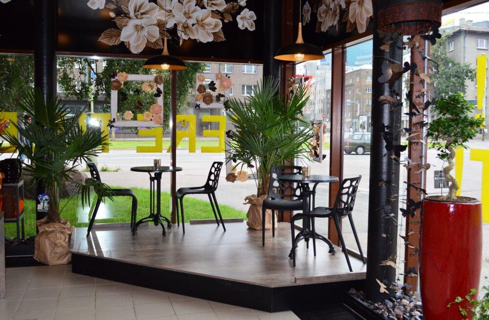 Kannike õitseb — Tallinna suurim ja tuntuim lillepood avas taas uksed