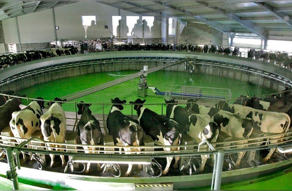 Väätsa Agro Lõõla farmi avamine