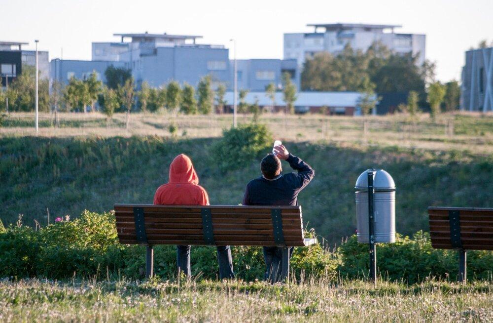 """ГРАФИК: """"Жизнь Эстонии в бутылке"""". Люди пьют много, но стесняются в этом признаться"""
