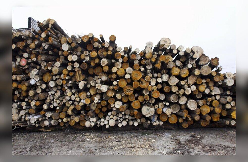 Erametsaliit: puidurafineerimistehase rajamine stabiliseeriks puiduturgu