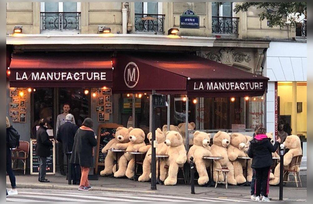 ФОТО: Армия плюшевых медведей захватывает Париж