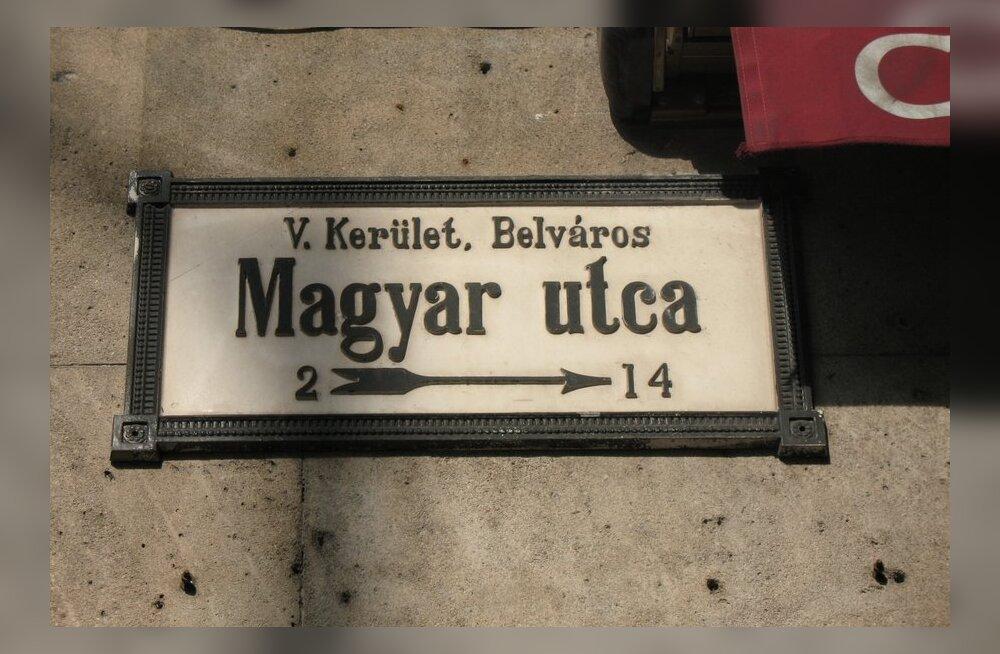 Ungari keel sai Lääne-Ukraina linnas regionaalkeele staatuse