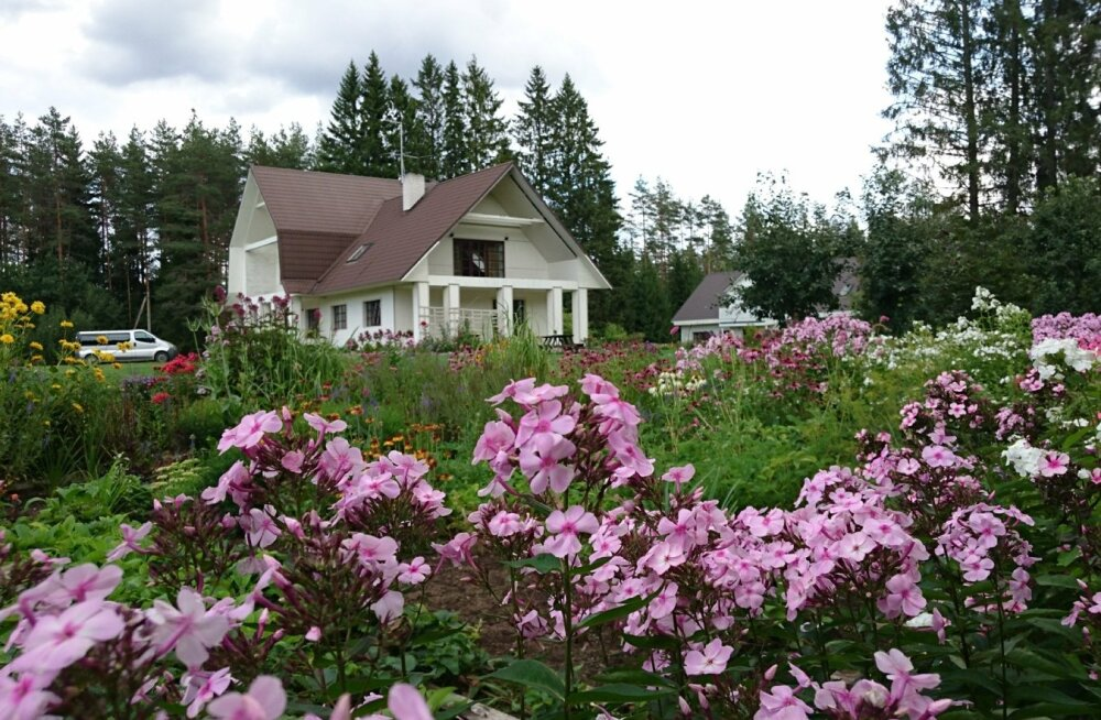 MEIE KODU 2018 - Anneli Saluste aed Kõrvekülas