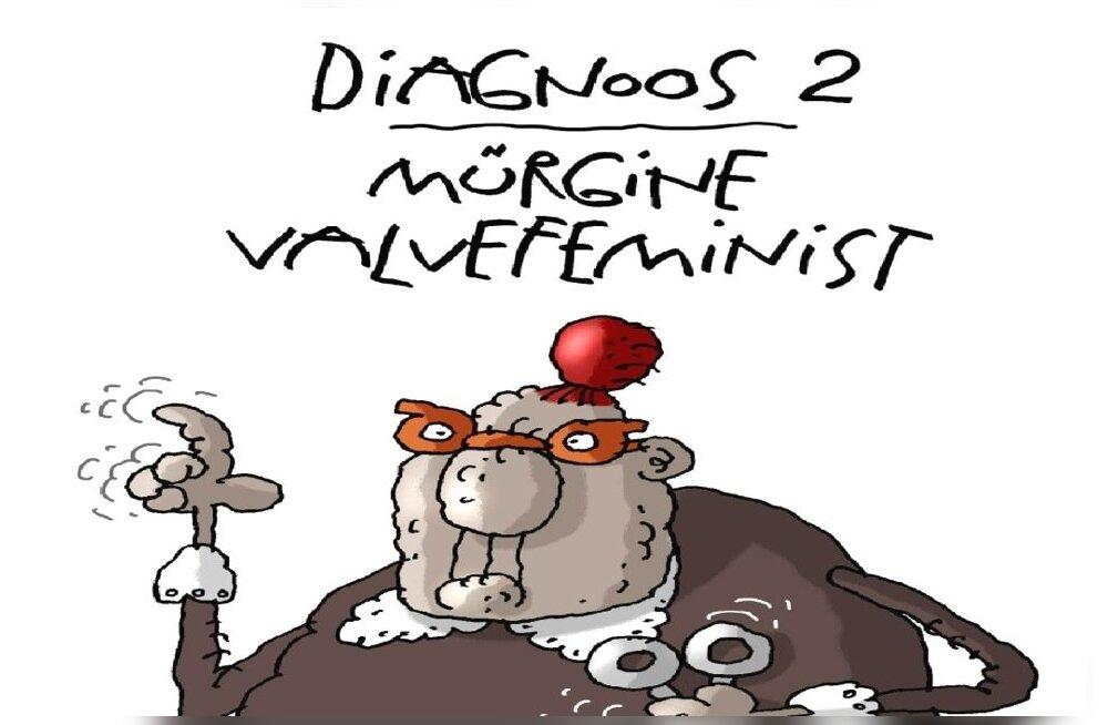 Valvefeministi karikatuur