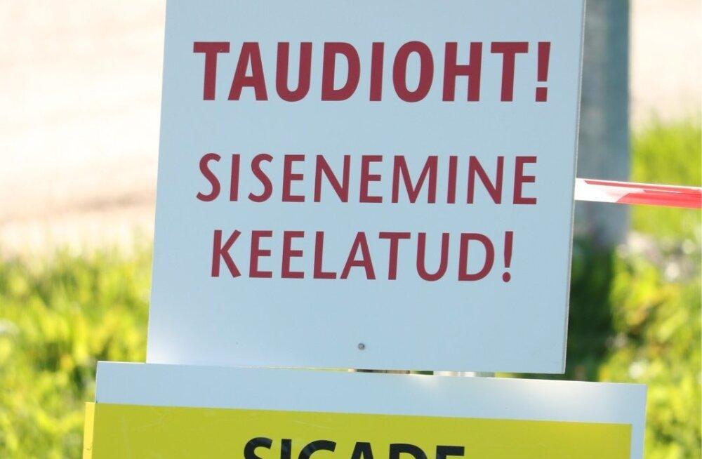Aafrika seakatk Saaremaal, Sakla seafarmis