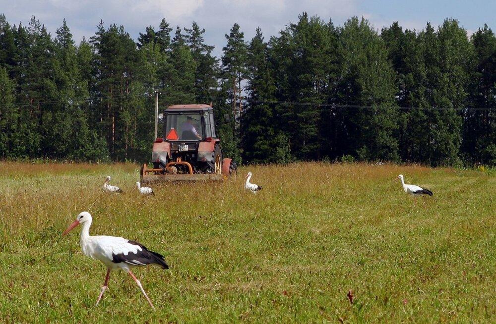 Võõrale põllule eksinud traktor tõi tüli majja