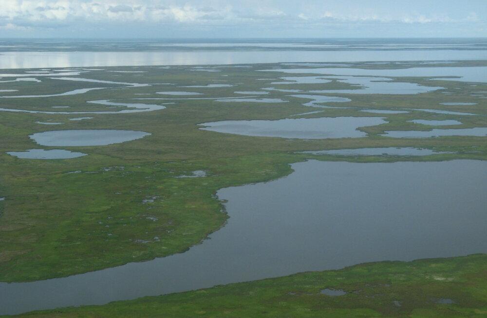 Alaskas leiti mullitav järv, mis näitab, et emakese maaga on midagi väga korrast ära