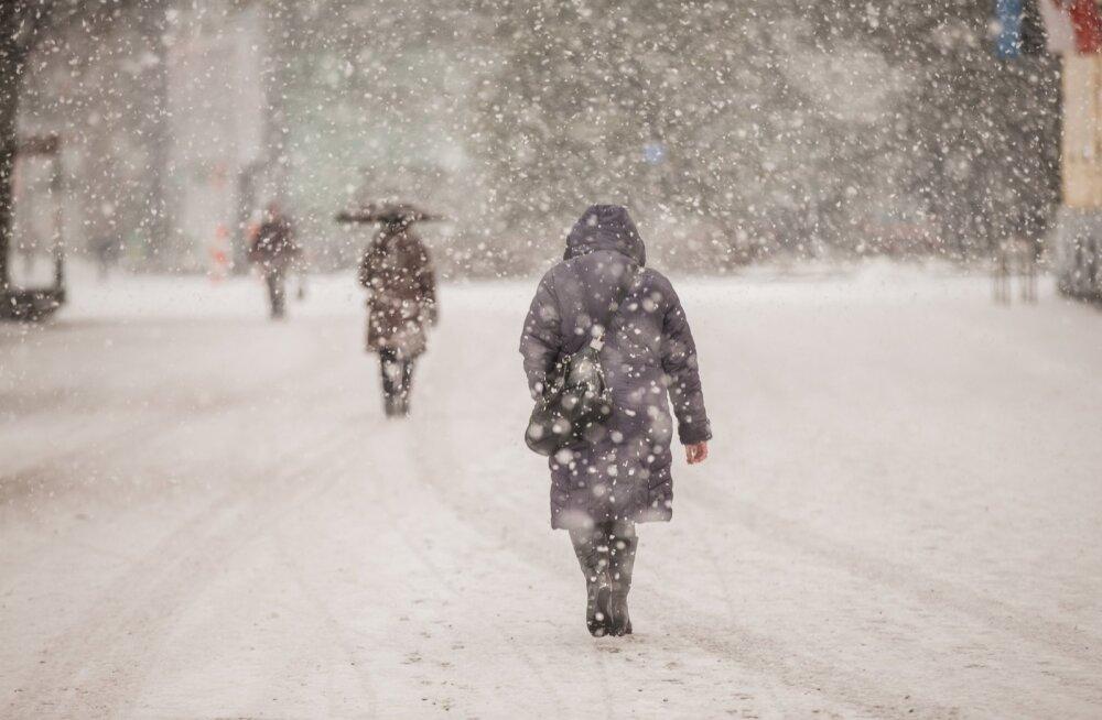 Ilmateenistus: kolmapäevani oodata krõbedat külma ja lumesadu, seejärel kisub sulaks