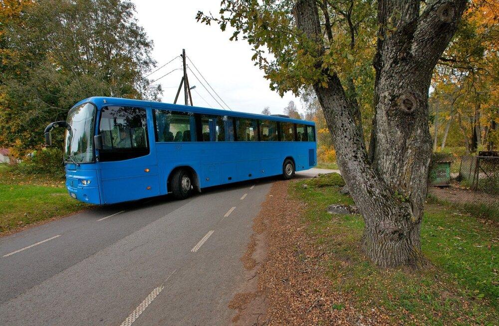 Kuigi teed on kohati kitsavõitu, Olev Arvisto ei nurise. Kogenud bussijuhina saab ta hakkama ka rasketes oludes.