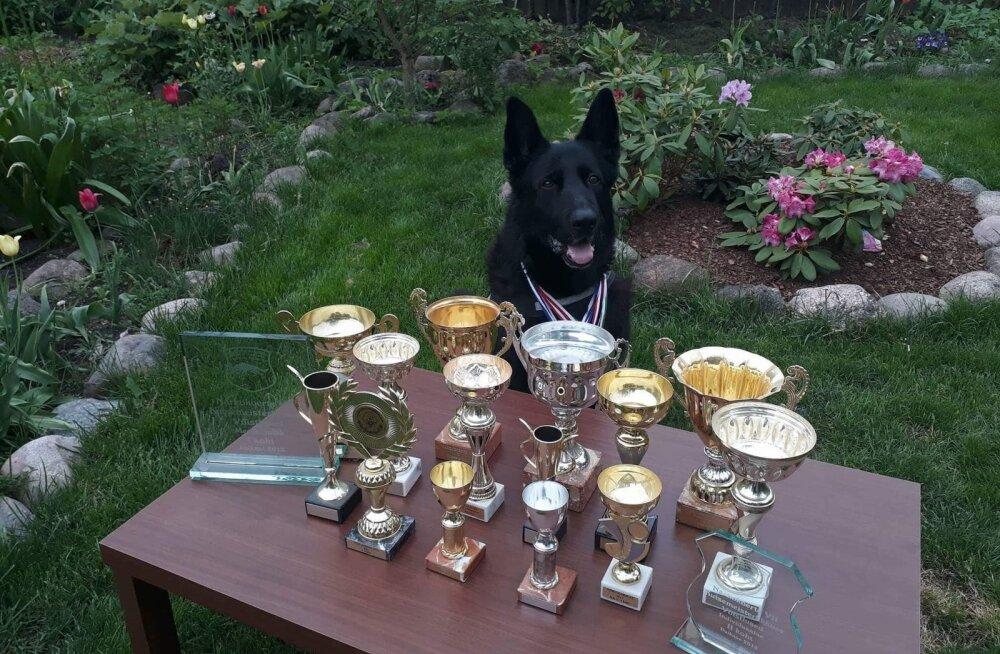 ФОТО: В Выру на пенсию проводили заслуженную служебную собаку Урри