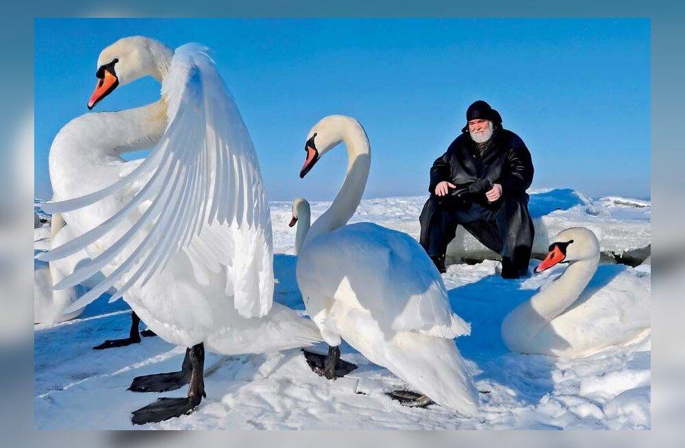 Raul Meel: Eestis pole puudu kunstiannetest