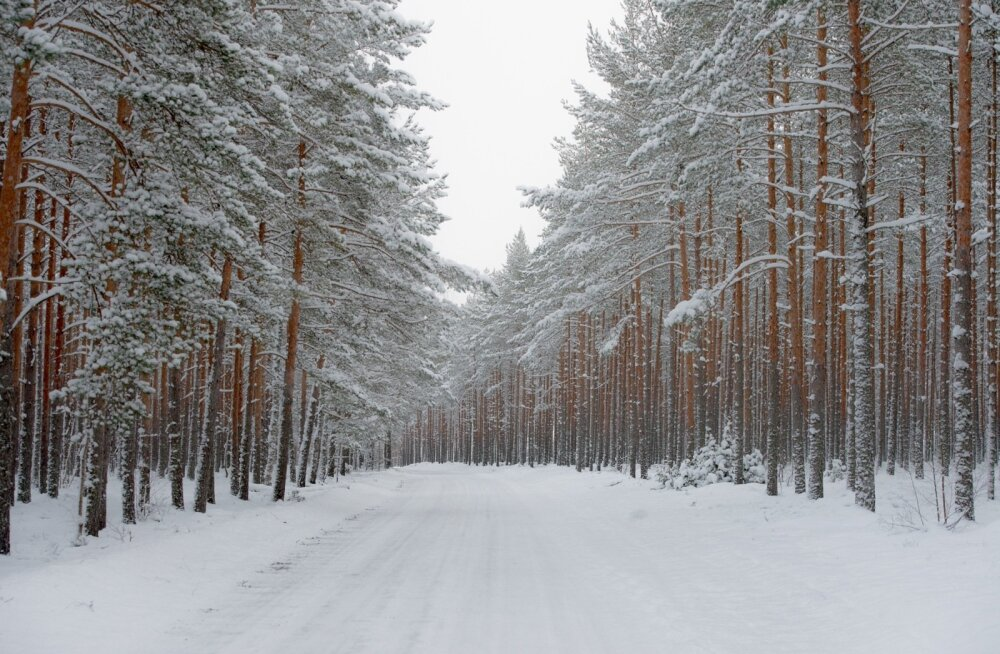 Liikluspiirangud ja teeolud: külm taandub, teed on kuivad