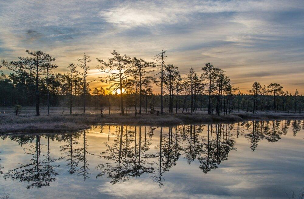 HÄÄLETUS: Tule ja aita valida Aasta Keskkonnategu 2015!