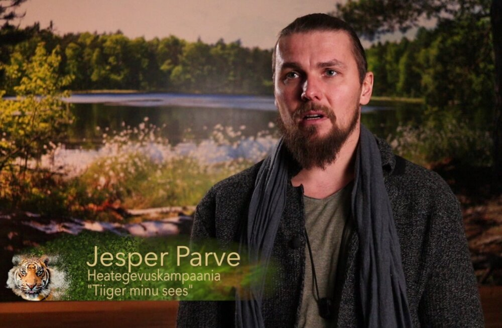 VIDEO | Tiiger minu sees: Jesper Parvele pole tiigritükid sugugi mitte võõrad