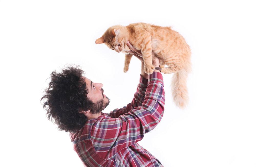 5 käitumisviisi, mida kass kasutab, kui ta tunneb end unarusse jäetuna