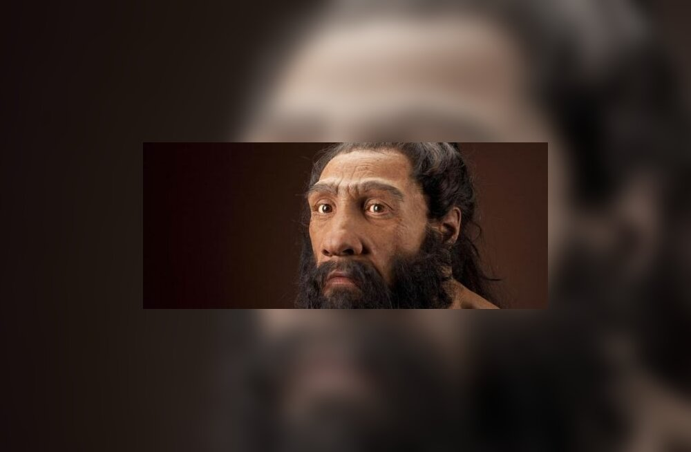 Neandertallane ja nüüdisinimene said omavahel järglasi