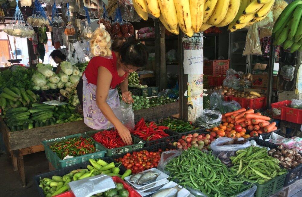 Juurikaletid on Tai turgudel värskest kraamist lausa lookas, eriti tasub tähele panna puuviljade valikut.