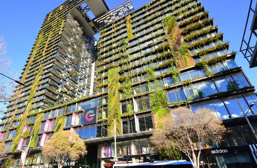 """Roheliste pilvelõhkujate aeg. """"Metsa linnad"""" hakkavad võitlema metropolide saastatusega"""