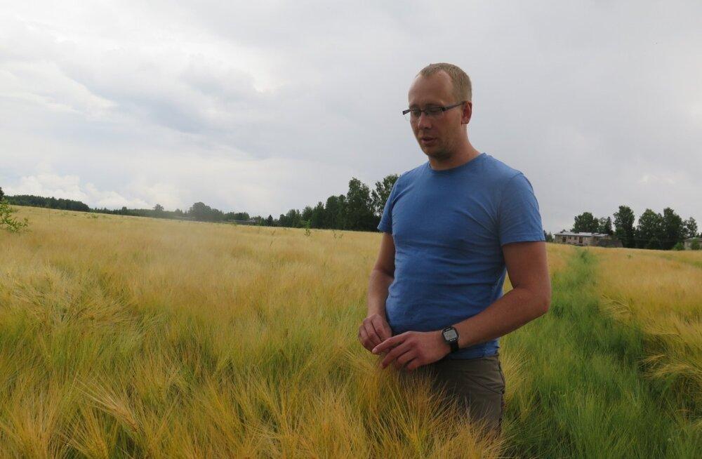 Kõige suurema taliodra saagi kogus tänavu Põlvamaa põllumees Erik Paalman.