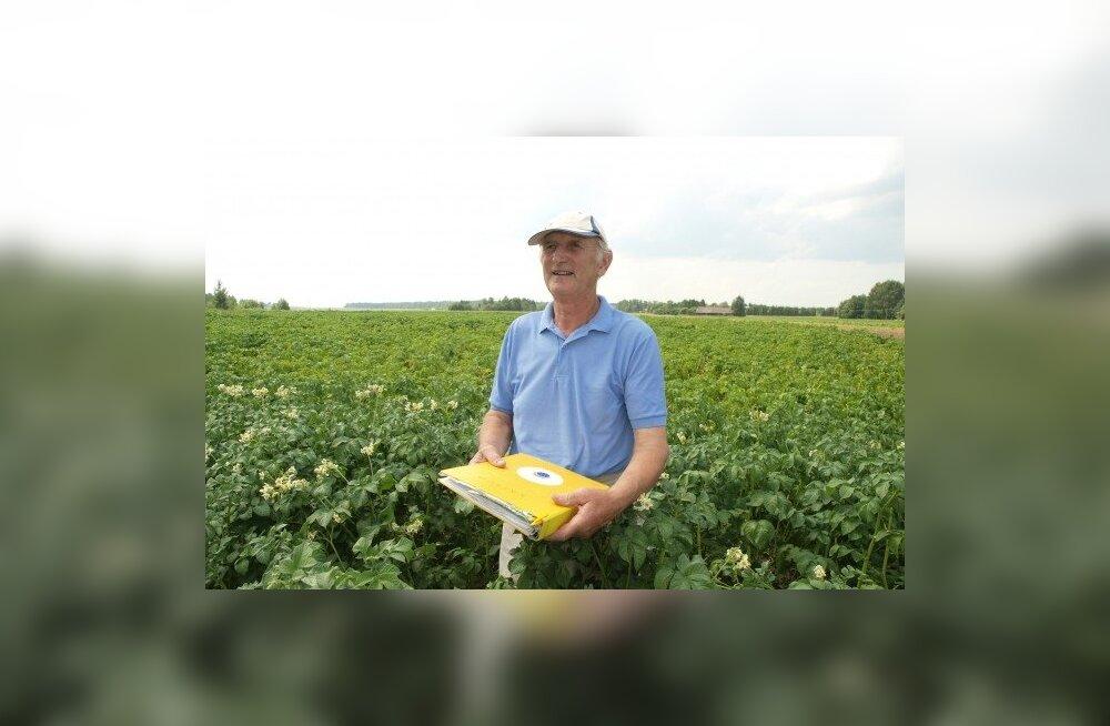 Kartulikasvatajast talunik kiidab punaparuneid