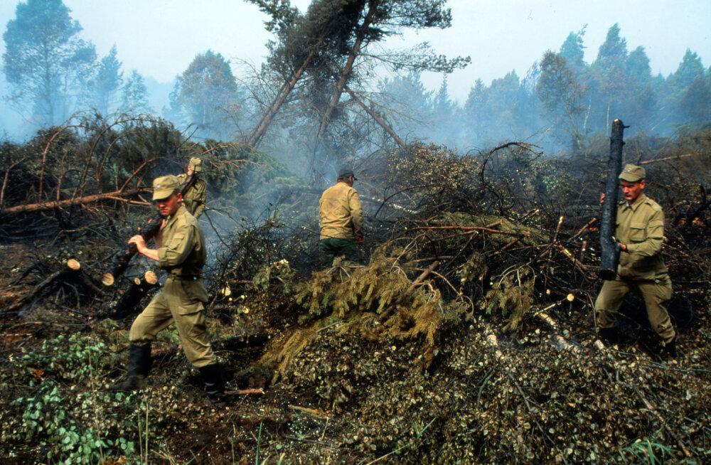 1992. aasta Vihterpalu metsatulekahju kustutamiseks kulus kaks nädalat