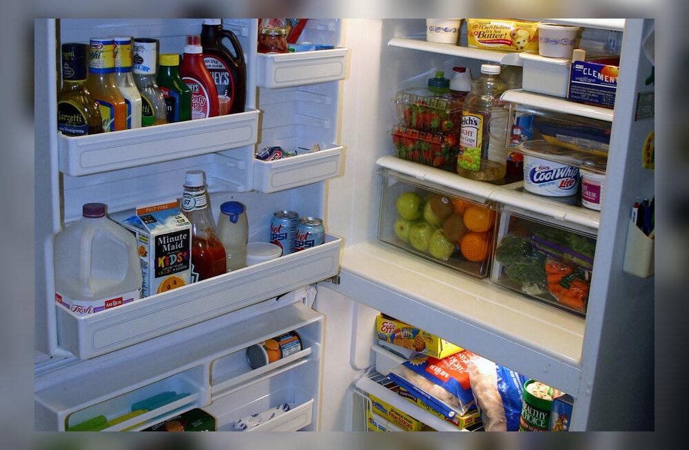 SUVENÕUANNE: Külmkappi ei maksa toiduga üle kuhjata