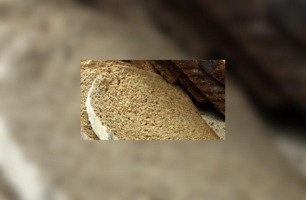 Pool eesti leivatoodangust liigub varsti piiri taha