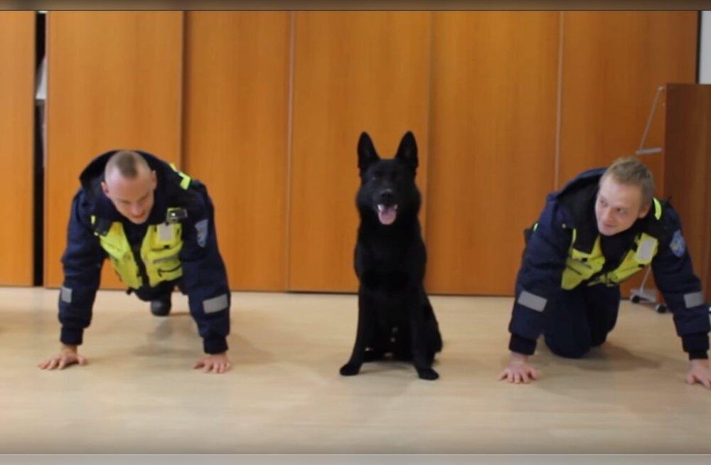 Armas VIDEO   Vaata, kuidas Eesti politseinikud koos käte- ja käpakõverdusi teevad