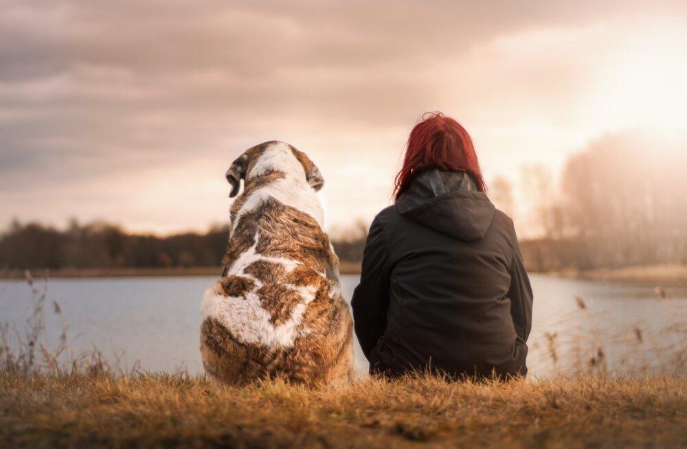 TEST | Tõde päevavalgele: mis sa arvad, kas armastad südames loomi lausa rohkem kui inimesi?