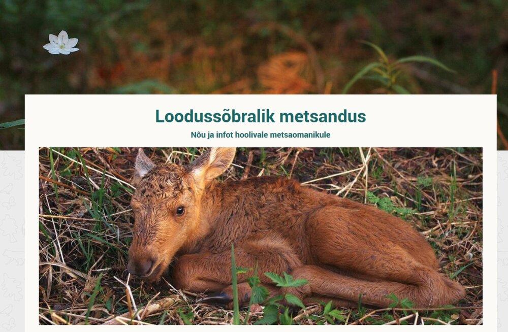 ELF uurib ning tutvustab uue veebilehega loodussõbralikku metsandust