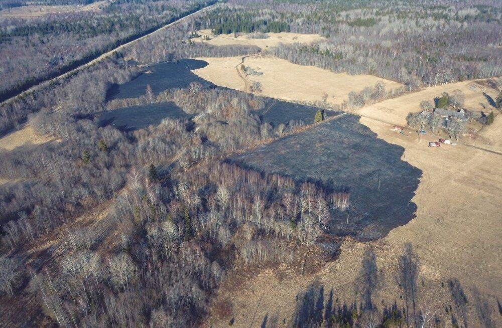 Tulekahjus Kiviloo küla juures põles mustaks mitu hektarit rohumaad.