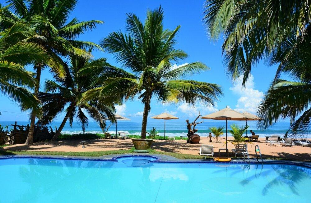 Puhkus palmide ja päikese all