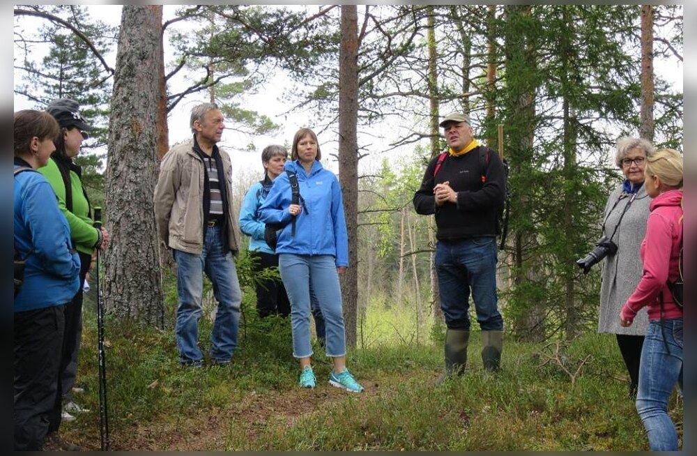 FOTOD: Kersti Kaljulaid käis koos Marko Pomerantsiga metsas matkamas