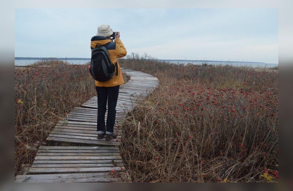 Selle sügise reisijuht: kuhu minna Eestis puhkama enne talveilmade tulekut