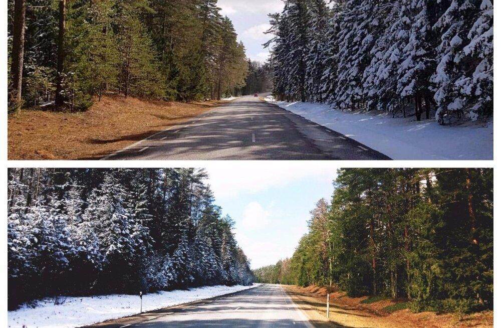 ФОТО: В Эстонии встретились весна и зима — эта картина очаровала тысячи людей