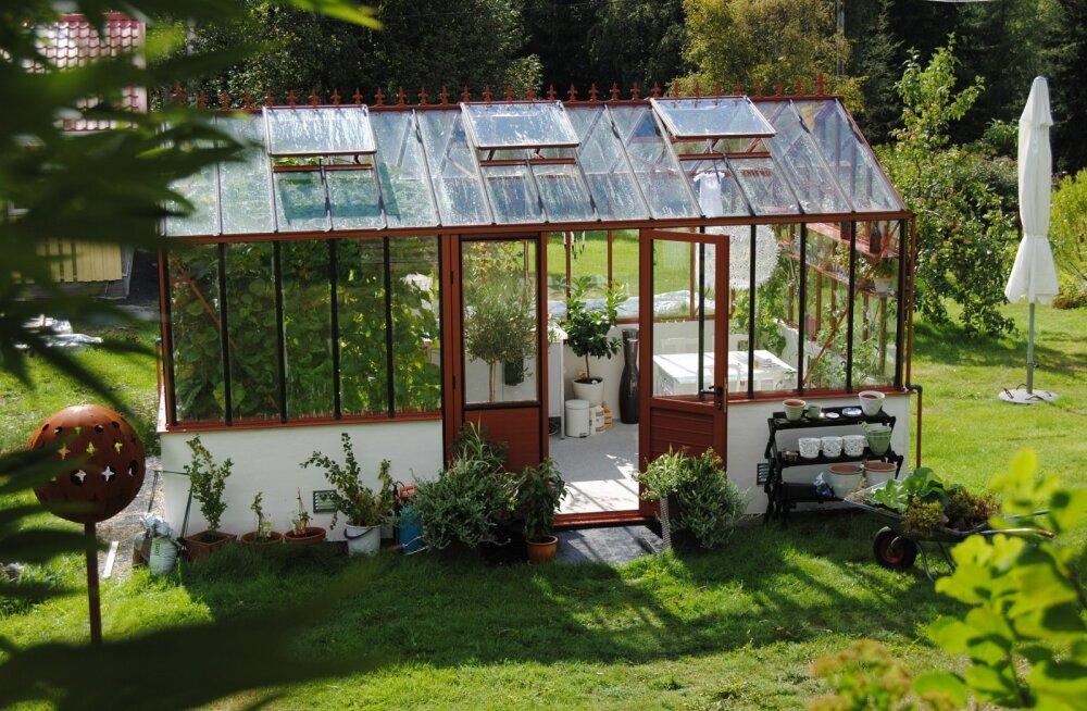 TEE ISE: Vahva kasvuhoone saab teha vanadest akendest