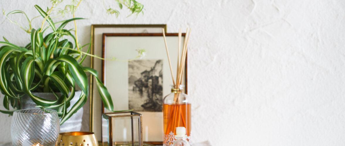 Kasulikud nipid, mille abil ebameeldivad lõhnad kodust eemal hoida