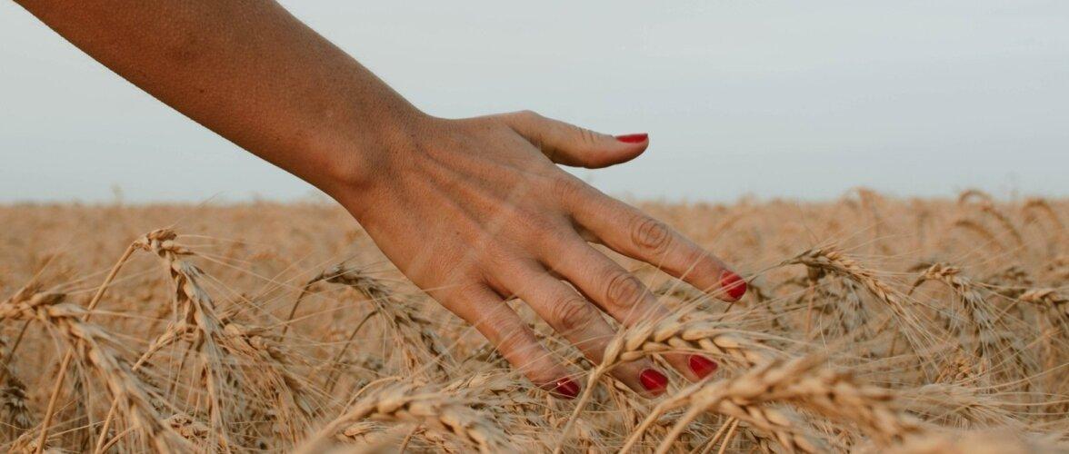 Veganiküünelakid: mis on nende püsivus ja mõju tervisele?