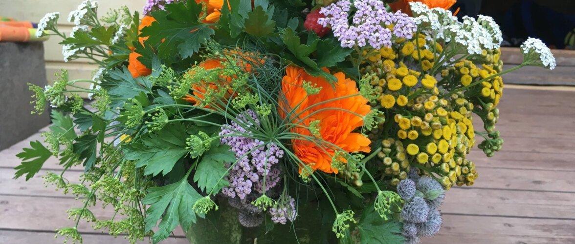 Kui kasutada seades ravim- ja maitsetaimi, saab kingisaaja pärast peoõhtut lilled kuivama panna, talvel maitsvat teed valmistada ning roogadele kuivatatud ürte puistata.