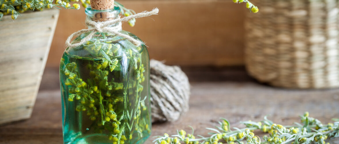 Millised põnevad taimed annavad tuntud alkohoolsetele jookidele omapära? Vaata järele!