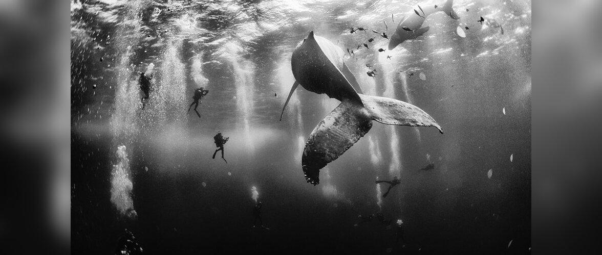 FOTOD: Tänavused maailma parimad reisifotod